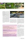 Bauen, Graben, Pflanzen - Zooshop-MAX - Page 4