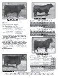 & Triple E Angus - Angus Journal - Page 7
