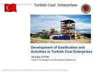 Development of Gasification and Activities in Turkish Coal Enterprises