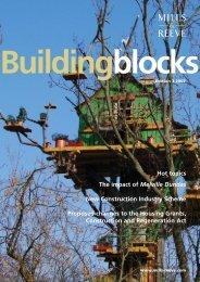Building Blocks Edition 3 2004 - Mills & Reeve