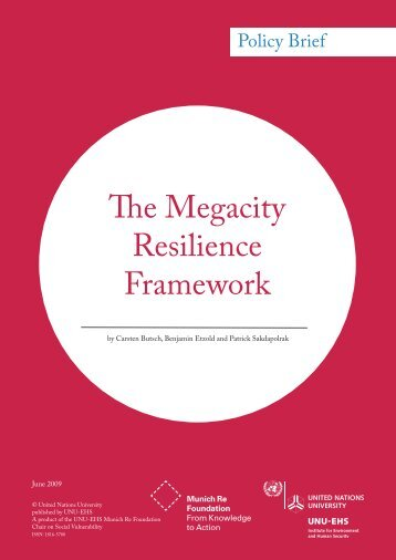 The Megacity Resilience Framework - United Nations University