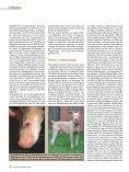 Fellfarben - Fehlfarben, - Seite 6