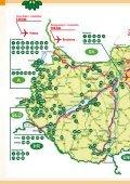 Szombathely - Nyugat-Dunántúli Díszfaiskolások Egyesülete - Page 2