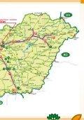Szombathely - Nyugat-Dunántúli Díszfaiskolások Egyesülete - Page 3
