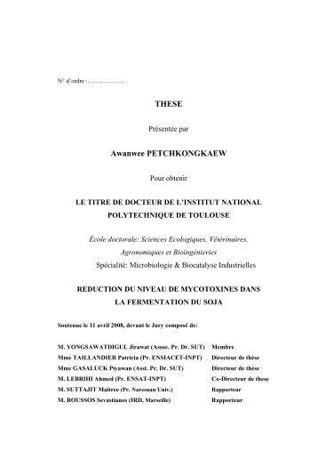 Awanwee PETCHKONGKAEW - Les thèses en ligne de l'INP ...