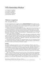 NTs historiska böcker - Till Liv
