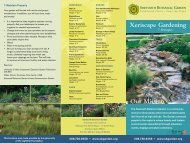 Download the Xeriscape brochure as a pdf. - Sawtooth Botanical ...