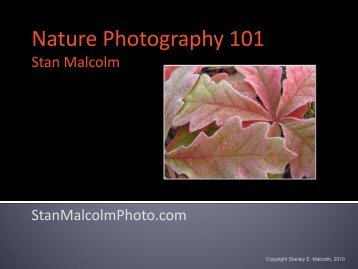 Nature Photography 101 - Performance Vision