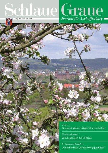 Schlaue Graue - Stadt Aschaffenburg