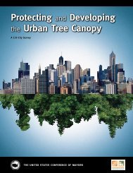 Protecting and Developing the Urban Tree Canopy
