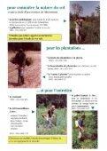 Les outils du sylviculteur - Page 3