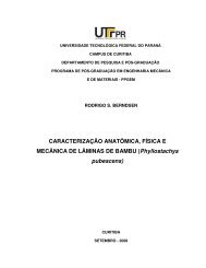 BERNDSEN, Rodrigo.pdf - PPGEM - UTFPR