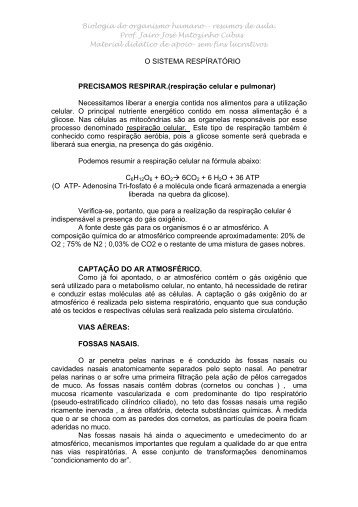 O SISTEMA RESPRATRIO - Jairo J. Matozinho Cubas