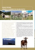 Brown Swiss_All languages.indd - Page 2