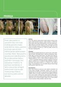 Brown Swiss_All languages.indd - Page 4