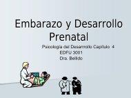 Embarazo y Desarrollo Prenatal - PageOut