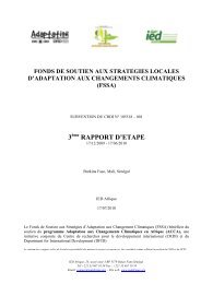 FSSA, troisième rapport d'étape - IED afrique
