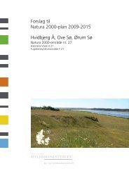 Forslag til Natura 2000-plan 2009-2015 - Naturstyrelsen
