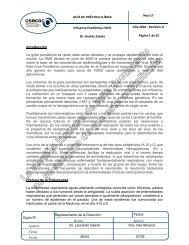 Neu-17 Influenza Pandemica H1N1_v0-10.pdf - osecac
