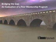 Bridging the Gap: An Evaluation of a Peer Mentorship Program