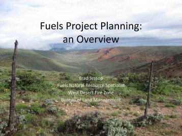 Fuels Project Planning - Sagebrush Steppe Treatment Evaluation ...