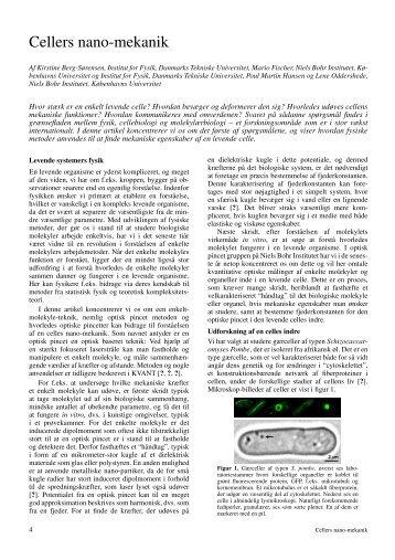 Cellers nano-mekanik - Kvant