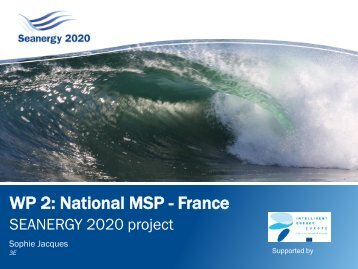 Work package 3 WP 2: National MSP - France - Seanergy 2020