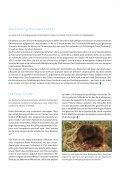 Download (pdf - Celgene GmbH - Seite 5