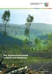 Der Gemeinschaftswald in Nordrhein-Westfalen - Wald und Holz NRW