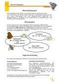 Konzeption des Kindergarten Wirbelwind - Gemeinde ... - Page 4
