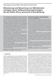 Bilanzierung und Bewertung von Nährelement ... - Wald-Zentrum