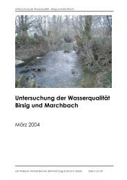 Untersuchung der Wasserqualität Birsig und ... - David Eberle