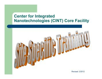 Center for Integrated Nanotechnologies (CINT) Core Facility