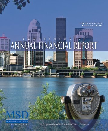 Comprehensive Annual Financial Report 2010 - MSD