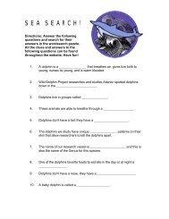 S E A  S E A R C H ! - Wild Dolphin Project