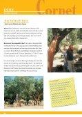 Korkboden - Seite 6