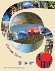 el faro 58 - International Year of Planet Earth