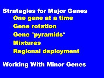 Strategies for Major Genes One gene at a time Gene rotation Gene ...