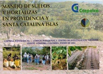 Manejo de suelos y hortalizas - Melón - Agronet