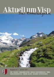 Ausgabe Nr. 5 | Sommer 2011 - Valmedia AG