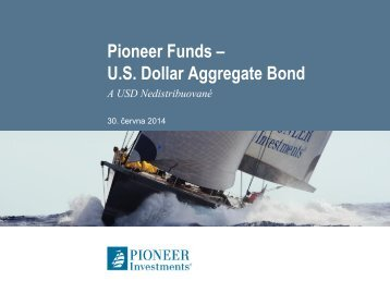 Portfolio Pioneer Funds – US Dollar Aggregate Bond