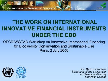 Presentation on international innovative financial instuments ... - GDM