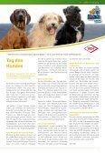 Sicher durch den Sommer - Uelzener Versicherungen - Seite 5