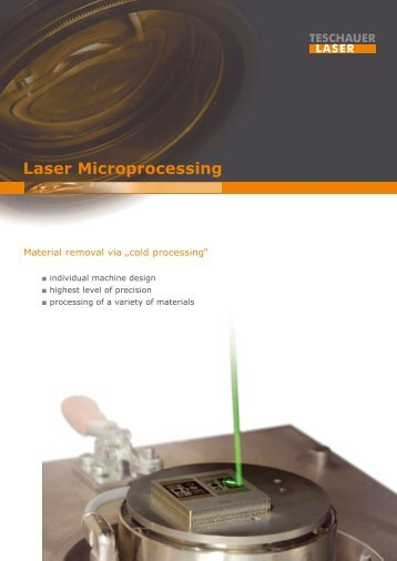 Laser Microprocessing