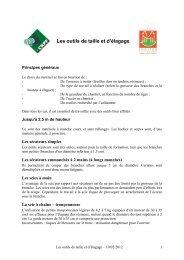 Les outils de taille et d'élagage - CRPF Limousin