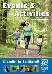 Events & Activities - Scottish Wildlife Trust