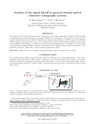 Analysis of the signal fall-off in spectral domain optical coherence ...