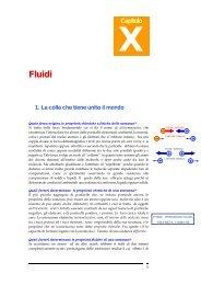Capitolo X – Fluidi - Francescopoli.net