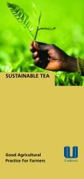 Sustainable Tea. Good agricultural practice for Farmers - Unilever