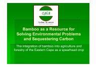 Louis delange.pdf - Eastern Cape Development Corporation